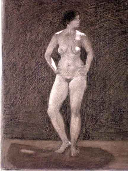 Female Nude, Lights and Darks