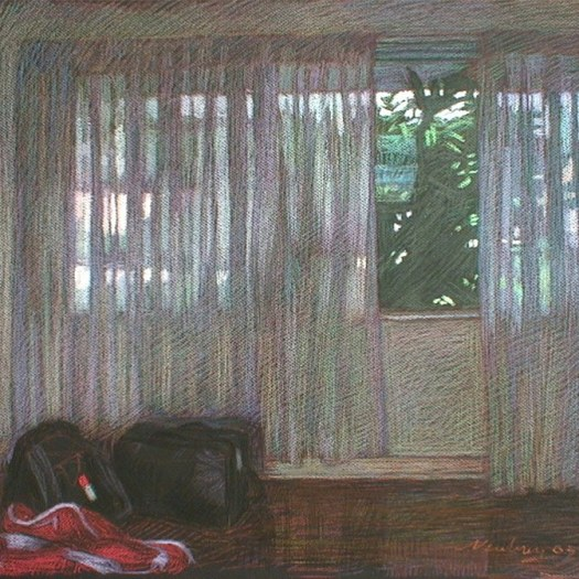 newberry-florida-curtains-studio-pastel-on-dark-paper-pc