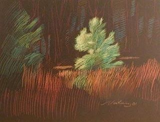 newberry-rhodes-baby-pine-pastel-on-dark-paper-pc