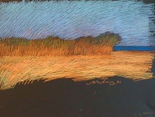 newberry-rhodes-bamboo-pastel-on-dark-paper-pc