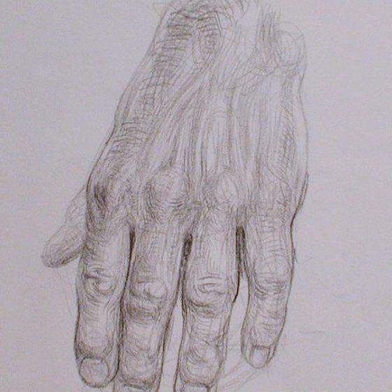 newberry_hand_study_pond_graphite