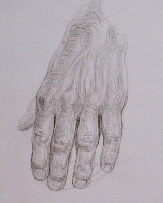 newberry_hand_study_pond_graphite