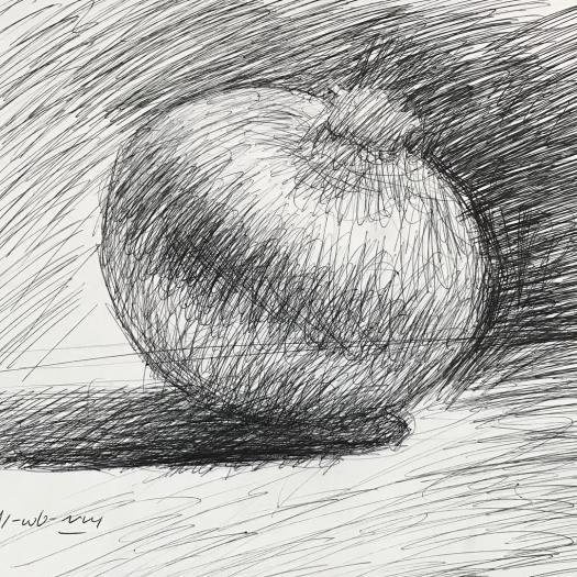 newberry_onion_demo_ink