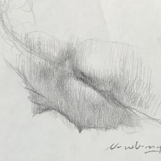 newberry_reclining_nude_female_back_graphite