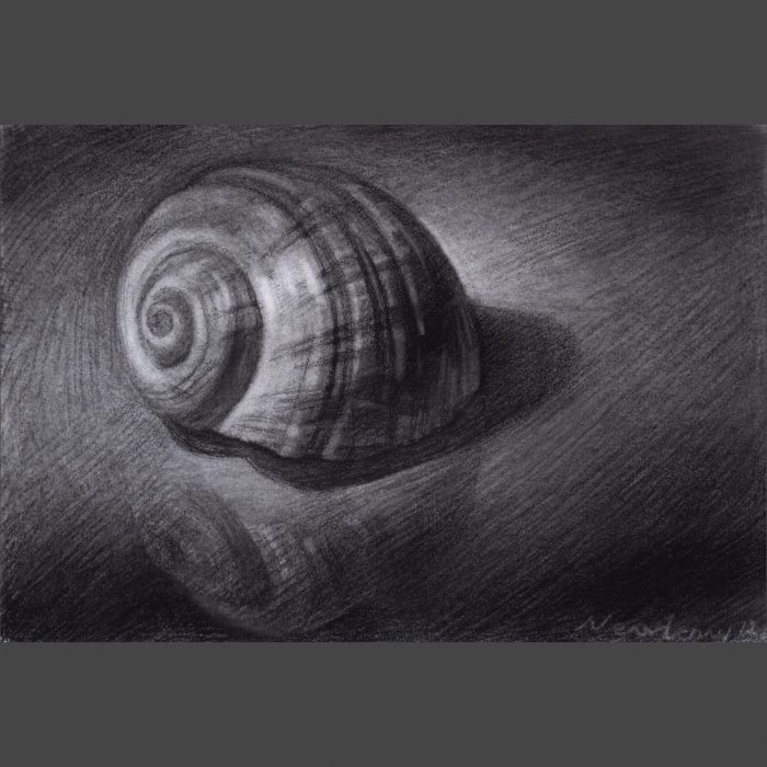 newberry_shell_charcoal