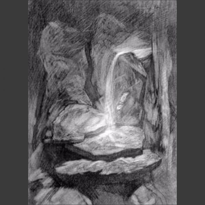 newberry_waterfall_study_synergy_charcoal