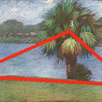 newberry-palm-triangulation