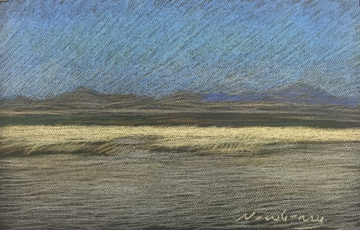 Newberry, Pale Field, pastel