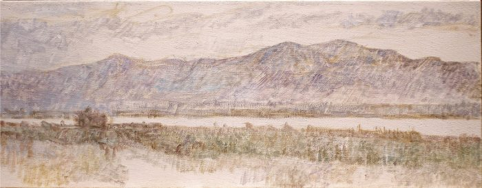 Newberry, Salton Sea Study, 2010, oil on linen, 12x22""