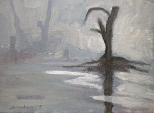 Newberry, St. Pete Lone Mangrove in Fog