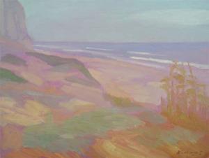 Newberry, California Beach San Onofre Gold Blue
