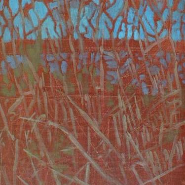 Newberry, St. Pete Picnic Island Grasses