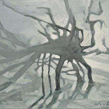 Newberry, Medusa's Head, St. Pete Dead Mangrove Tree