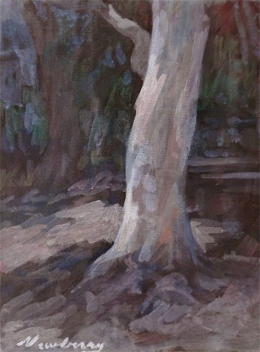 Newberry, Eucalyptus Santa Monica, acrylic on panel, 12x9""