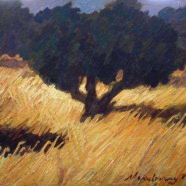 Newberry, Rhodes Greece, Olive Grove