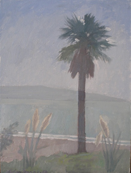 Newberry, Santa Monica Palm