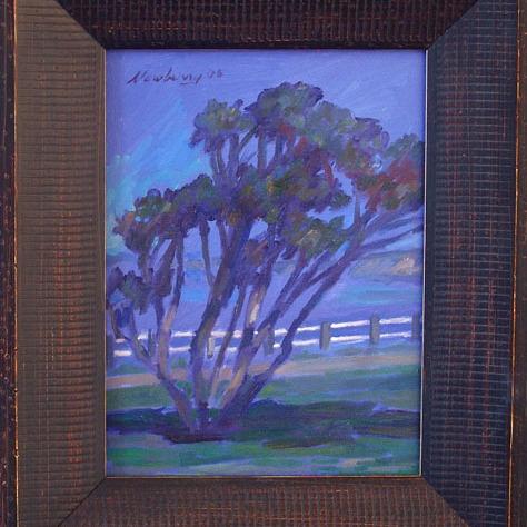 Newberry, California, La Jolla Tree
