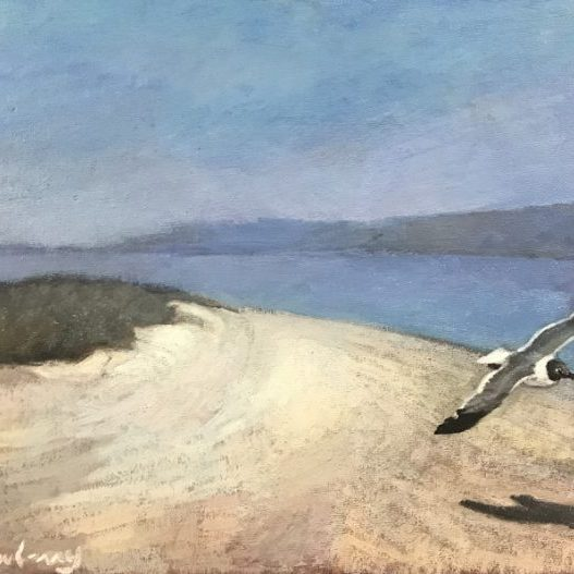 """Newberry, Seagull at Picnic Island, 2020, oil on panel, 12x16"""""""