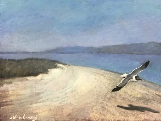 Newberry, Seagull at Picnic Island, 2020, oil on panel, 12x16""