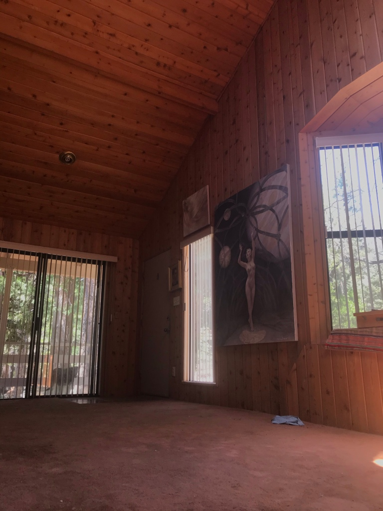 Newberry Studio in Idyllwild, California #5