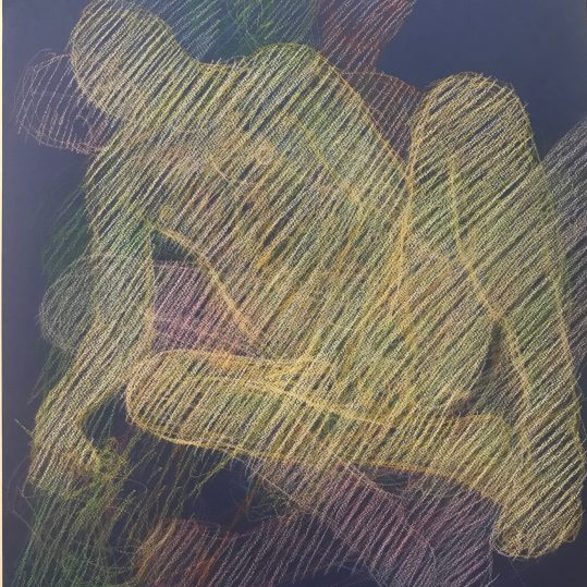 newberry reclining echoes 2020 pastel overlapping poses on black paper