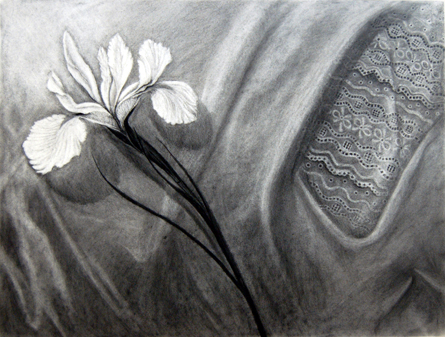 Mary Woodul, Espíritu Ascendente, charcoal on Rives BFK, 13x19""