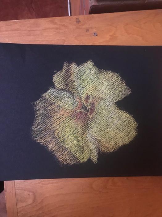 susan-surber-flower-pastel-1