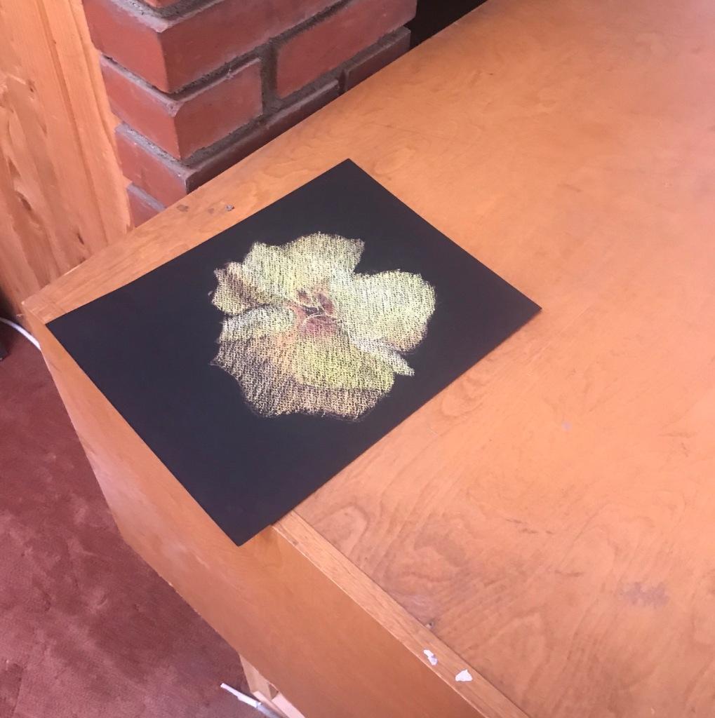 susan-surber-flower-pastel-2