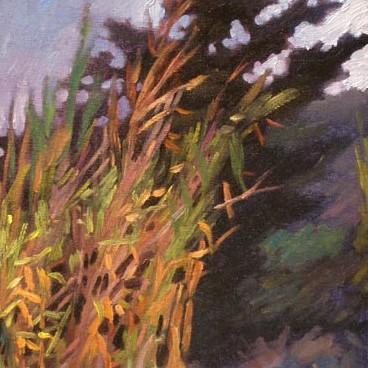 newberry-bamboo-rhodes-oil