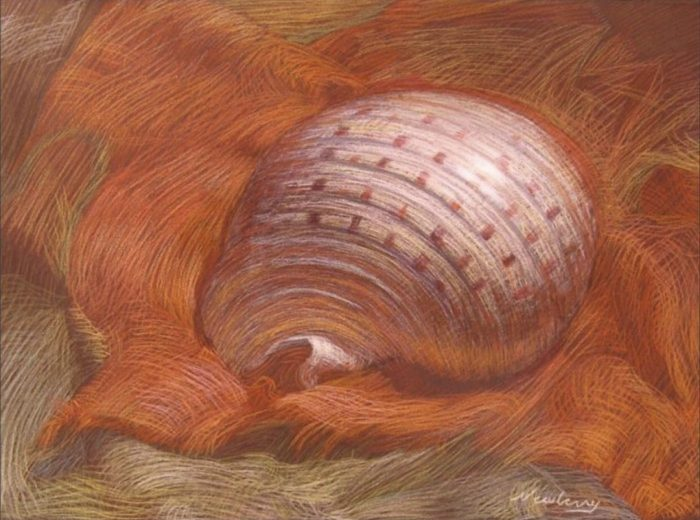 Newberry, Shell on Orange Linen, pastel