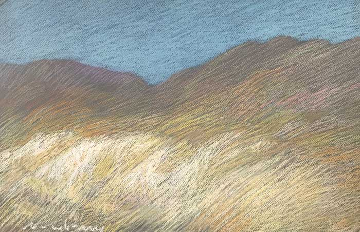 Newberry, Borrego Springs, 2020, pastel, 13x18""