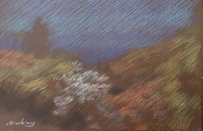 Newberry, Idyllwild Bend, 2020, pastel, plein air, landscape.