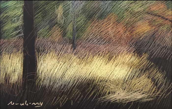 Newberry, pastel of Saunders Meadow in Idyllwild