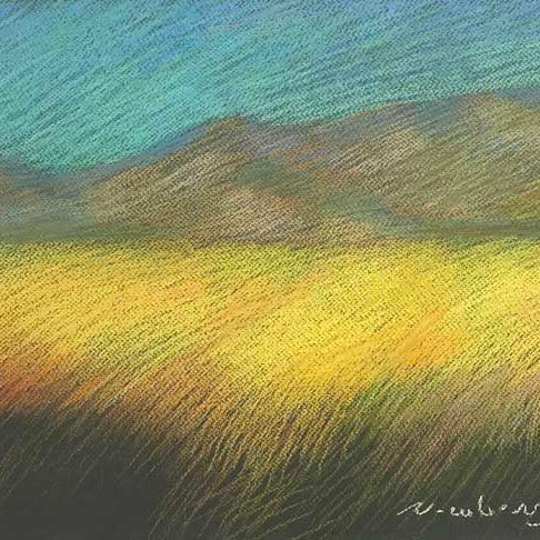 Today's pastel edit aiming for a yellow glowing field and ambient color, Newberry