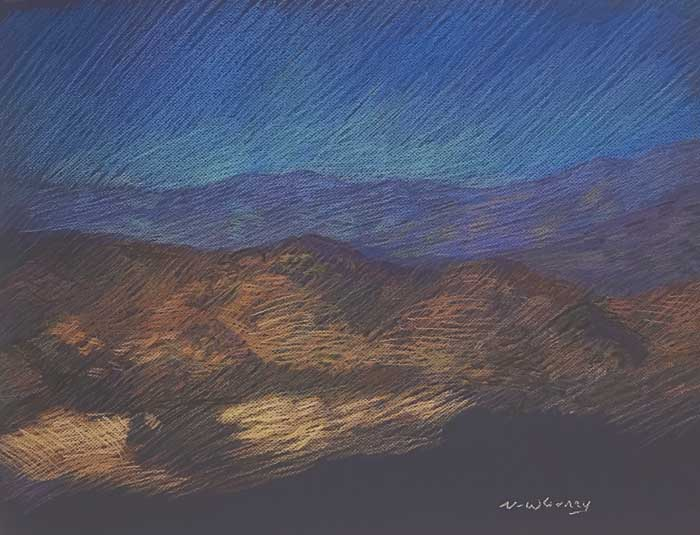 Newberry, Joshua Tree, 2020, pastel, 18 x 24""