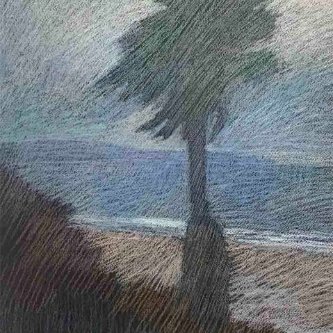 "Newberry, Palm Ocean Ave, 2010, pastel, 21x15"""