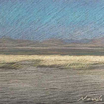 "Newberry, Texas Grass, 2020, pastel, 13x18"""