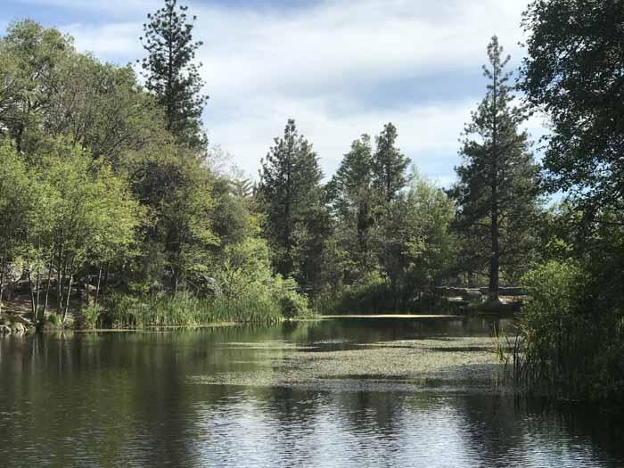 Lake Fulmor, Newberry Idyllwild Pastel Plein Air Workshop, 2021